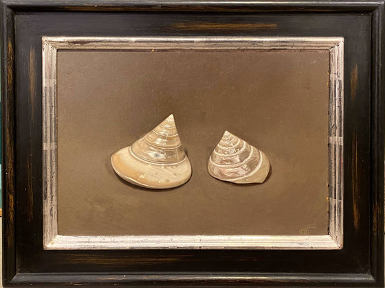 Two Cone-Shaped Shells