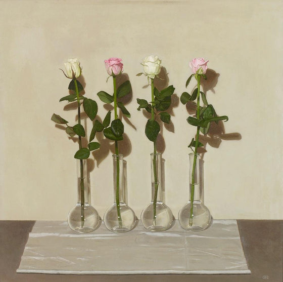 Four Pink and White Roses