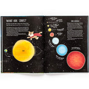 A Cat's Guide to the Night Sky Book