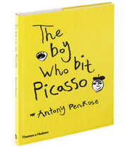 THE BOY WHO BIT PICASSO BOOK