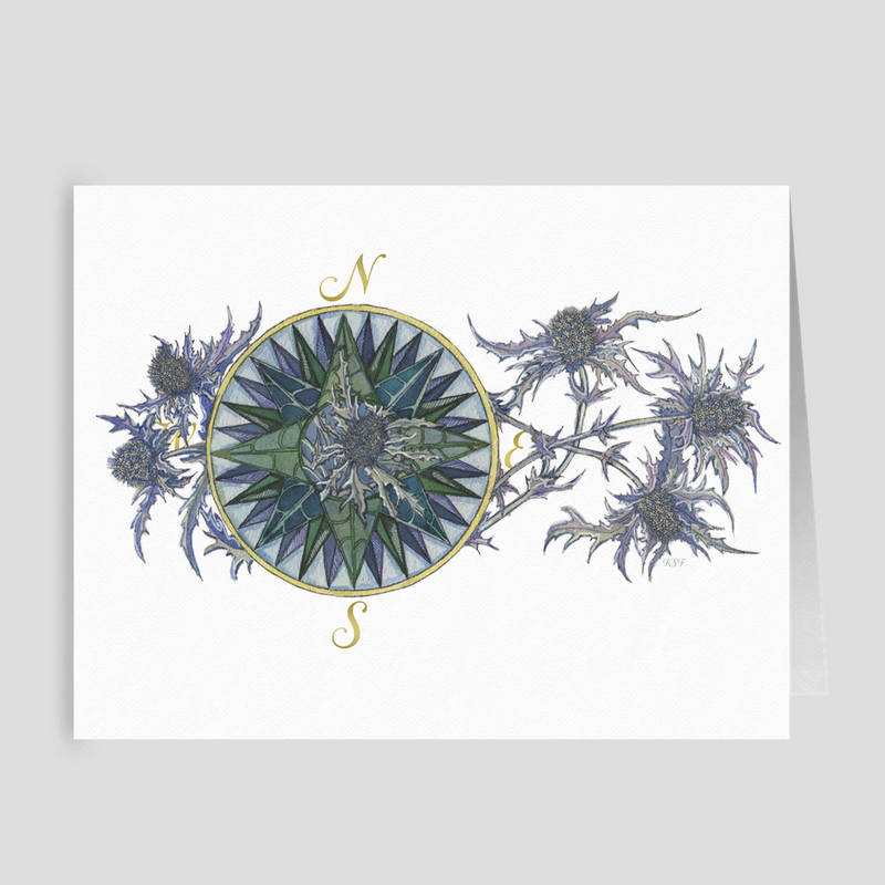 Blooming Compass: Sea Holly of the PNW - Folded Cards