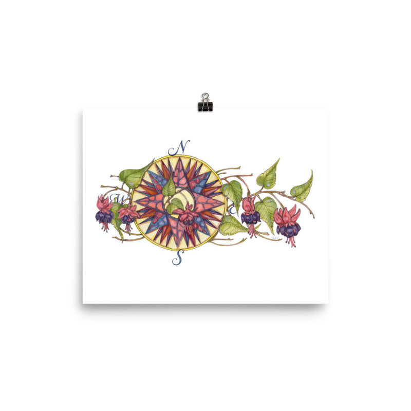 Blooming Compass: Fuchsia of New England - Art Print