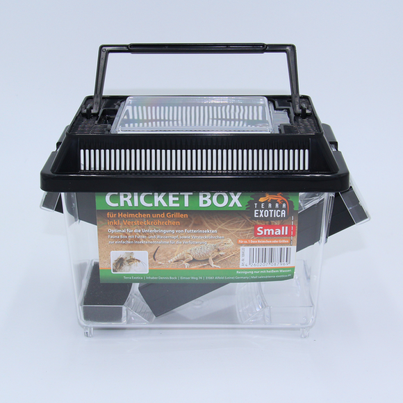 Cricket Box - small
