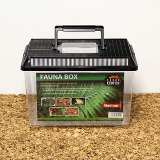 Fauna Box - medium