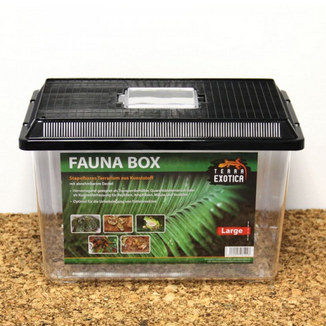 Fauna Box - large