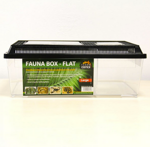 Fauna Box Flat - large