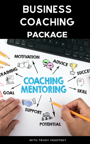 Business Coaching/Mentoring Package