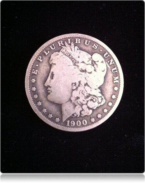Expanded Shell - Soft Morgan Dollar