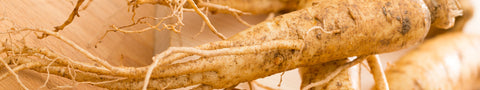 ginseng-kbeauty-ingredient