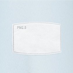PM2.5 Filter for Face Masks - Sistar Cosmetics