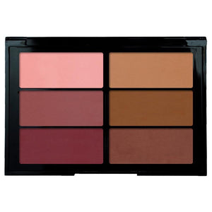 Viseart Blush Palette 01 - Plum / Bronze