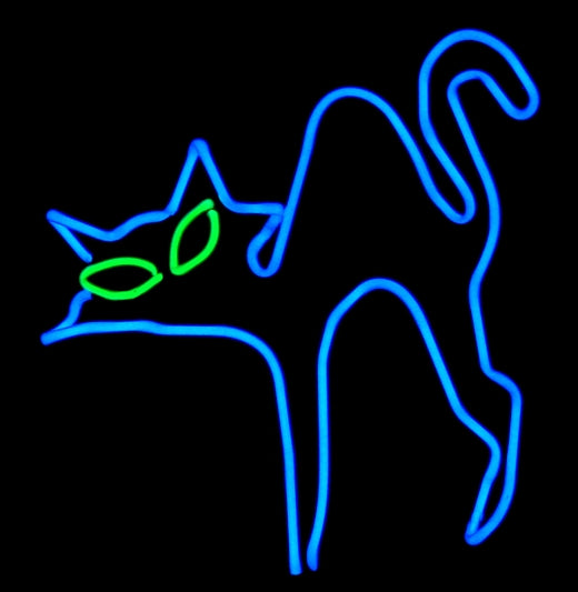 neon cat feline gato sculpture