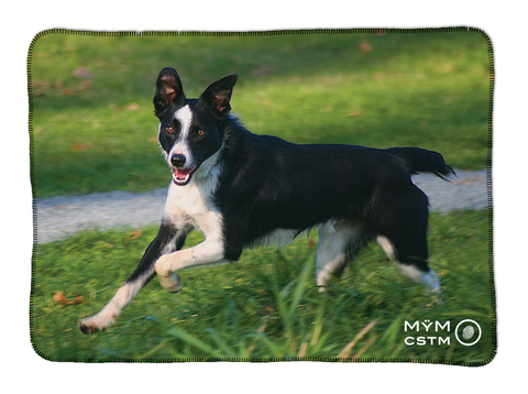 "Dog Blanket - ""Jake"" Border Collie"