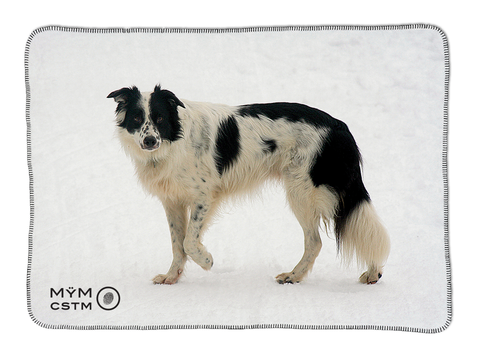 "Dog Blanket - ""Maya"" Border Collie"