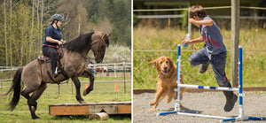 Puppies & Ponies Playday