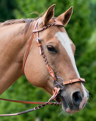 Braided headstall shown with matching reins and LG Bitless Bridle.