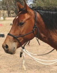 The natural hackamore includes adjustable rope reins for riding and a 12-foot macate lead for ground play and tying.