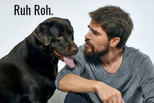 DOG VS. BEARD – MANBASICS RANT