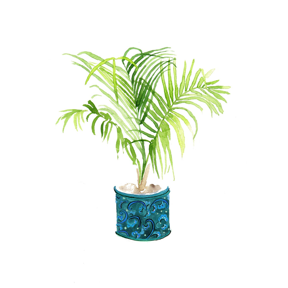 Palm in a turquoise plant pot Art Print