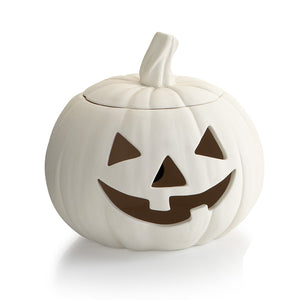 Our Jack-o-lantern Pumpkin comes with a light kit.  Perfect for a Halloween tablescape.