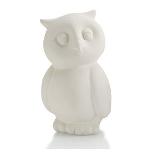 "4.5"" Owl Party Animal"