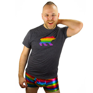 Bear Pride Rainbow Gay Men's T-Shirt - BravoPapa Clothing