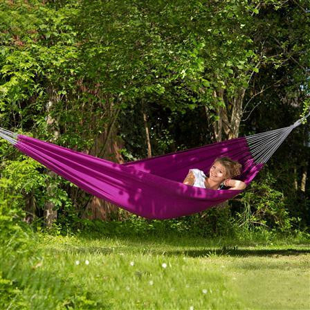 Miami Berry Hammock