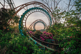 Nara Dreamland Photo Bundle - Signed Collection One