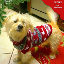 Load image into Gallery viewer, Adorable Dog Christmas Sweater Offer
