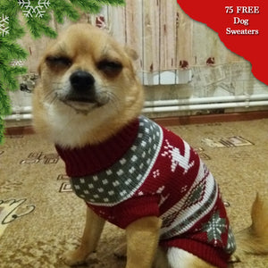 Adorable Dog Christmas Sweater Offer