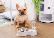 Load image into Gallery viewer, Magic Bowl Water Feeder For Dogs & Cats