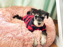 Load image into Gallery viewer, Warm Fleece Comfy Pet Lounger Cushion + Free Paw Necklace