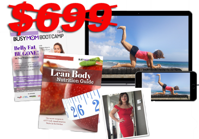 INSTANT ACCESS : 66-Day Busy Mom Weight Loss System