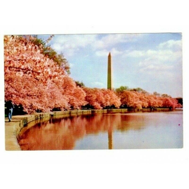 Washington Monument DC Chrome USA Vintage Postcard PE 27 - fazoom