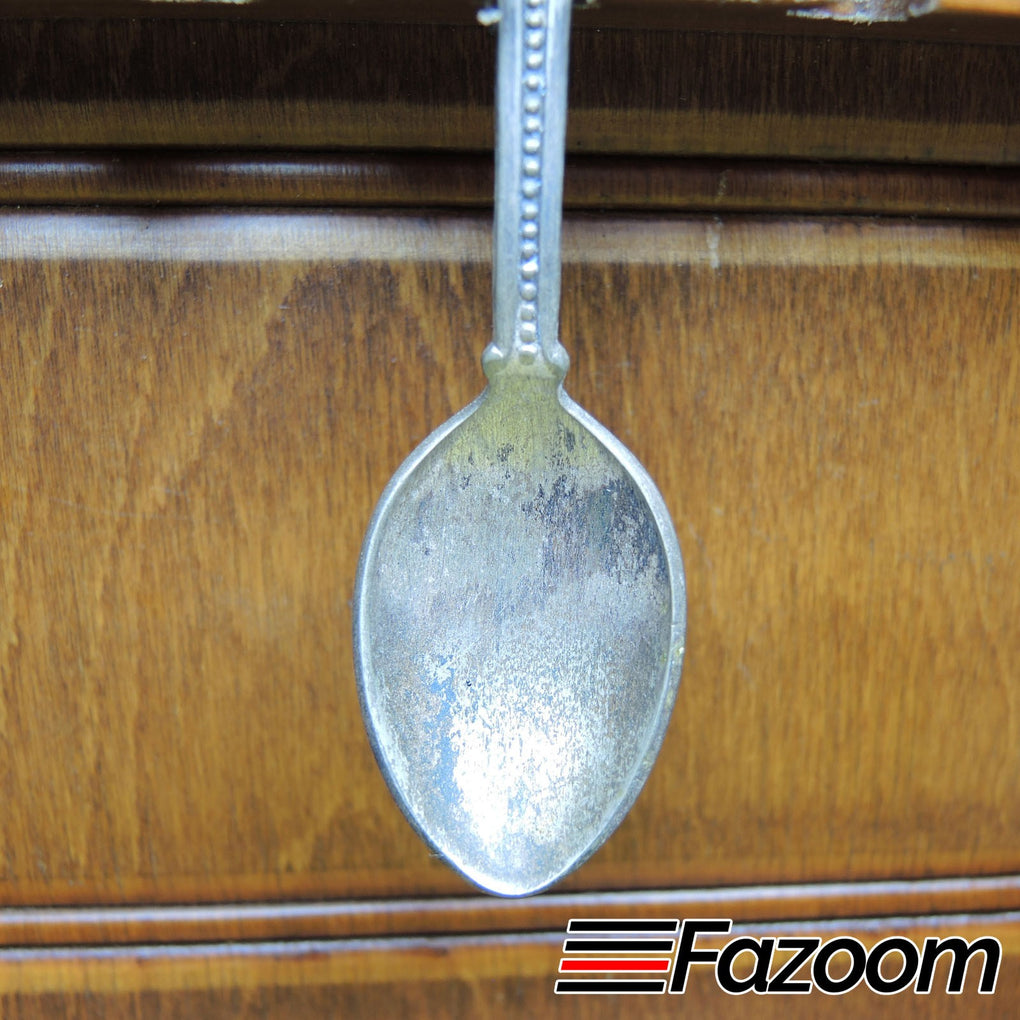 Idaho Syringa Flower & Mountain Bluebird State Bird Souvenir Collectible Silverplated Spoon by Celest - Fazoom
