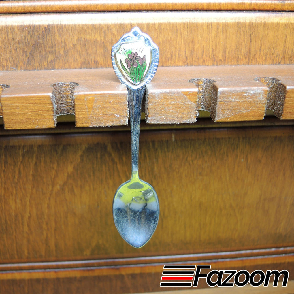 Tennessee State Flower Souvenir Collectible Spoon - Fazoom