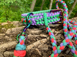 "Bootlace Collar 13""-14"" and 6ft leash set"