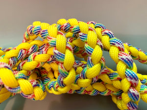 Slim Jim Yellow and Rainbow Leash
