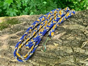 6ft blue and yellow braided leash