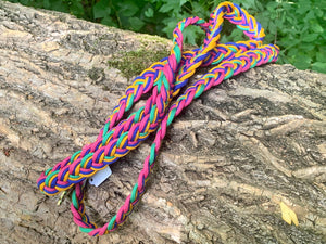6ft leash in royal colors