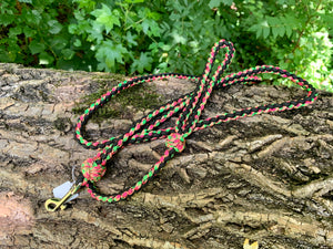 Slim Jim black, lime green and hot pink Leash