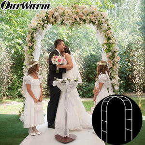 Metal Wedding Garden Plant Arch Photo Door Backdrop Bride Groom Rustic Wedding Party Decoration