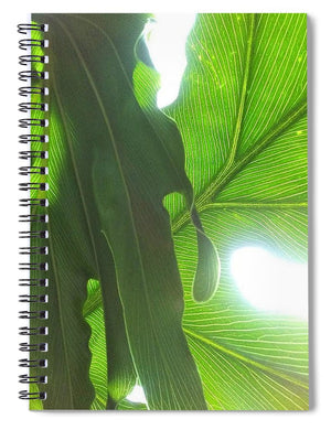Drawn to the Sun - Spiral Notebook