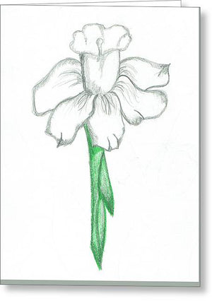 Flower Pencil Sketch - Selective Color - Greeting Card