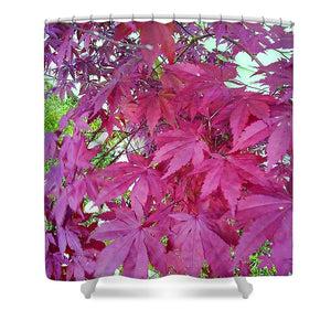 Japanese Maple Leaves - Shower Curtain