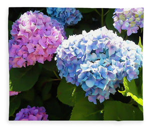 Martha's Vineyard Hydrangeas - Blanket