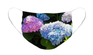 Martha's Vineyard Hydrangeas - Stylized - Face Mask