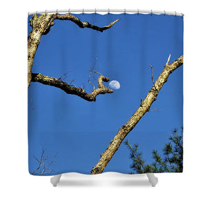 Plucked from the Sky - Shower Curtain