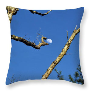 Plucked from the Sky - Throw Pillow