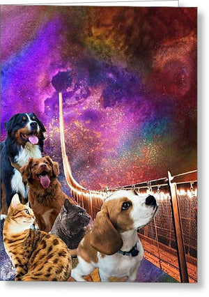 Rainbow Bridge - Cats and Dogs - Greeting Card